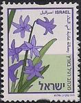 Израиль 2003 год. Гиацинт. Стандарт. 1 марка
