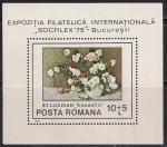 Румыния 1979 год. Международная филвыставка в Бухаресте. 1 блок