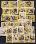 Набор спичечных этикеток. Породы собак. 1963 г. 27 шт.