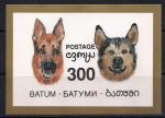 Батуми 1994 год. Собаки. 1 блок
