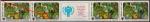 """СССР 1979 год. Международный год ребёнка. """"После дождичка"""" (ном. 3к). Сцепка с купоном. Разновидность - розовое пятно на спине"""