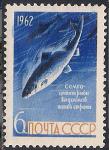 СССР 1962 год. Сёмга (ном. 6к). Разновидность - синее пятно на задней части