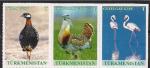 Туркменистан 2017 год. Птицы в дикой природе. Сцепка
