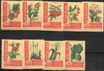 Набор спичечных этикеток. Потребительская кооперация закупает. 9 шт. 1962 год.