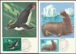 5 Картмаксимумов. Фауна Антарктики. 20.07.1978 год.