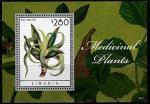 Либерия 2013 год. Лекарственные растения. Алоэ, блок