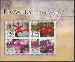 Мальдивы 2007 год. Цветы, малый лист