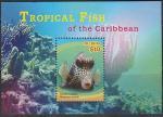 Сент-Китс 2014 год. Тропические рыбы Карибского бассейна, блок