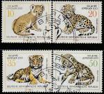 ГДР 1978 год. 100 лет зоосаду Лейпцига. Котята больших кошек, 4 гашёные марки
