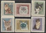 Болгария 1967 год. Кошки, 6 марок