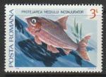 Румыния 1984 год. Рыба, 1 марка из серии (281.4033)
