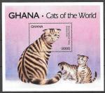 Гана 1994 год. Породы кошек. Шотландская коричневая. 1 блок.