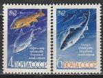 СССР 1962 год, Рыбы, серия 2 марки