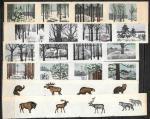 Набор спичечных этикеток. Зимний лес. 28 шт. 1973 год